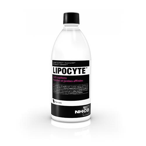 Lipocyte